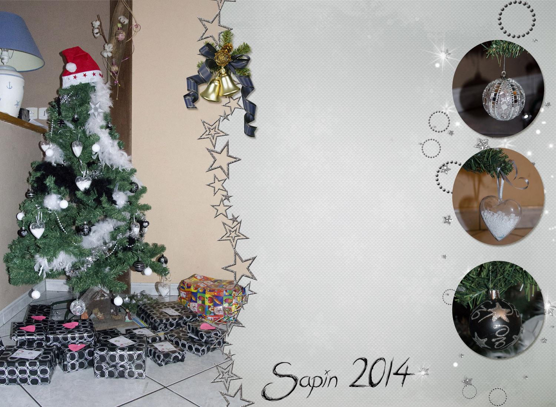 sapin-2014